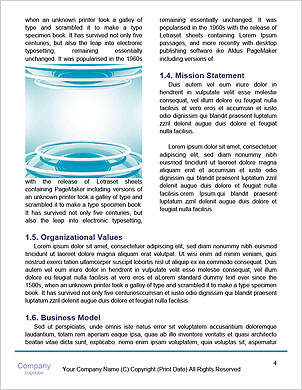 0000092043 Word Template - Page 4