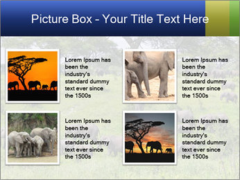 0000092047 PowerPoint Template - Slide 14