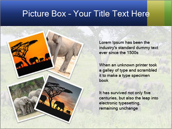 0000092047 PowerPoint Template - Slide 23