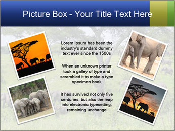 0000092047 PowerPoint Template - Slide 24