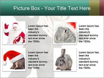 Funny grey rabbit PowerPoint Template - Slide 14