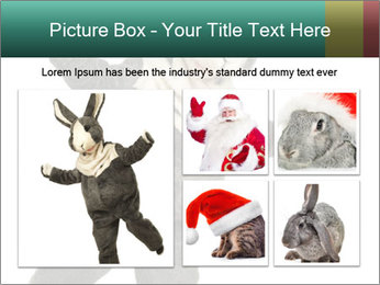 Funny grey rabbit PowerPoint Template - Slide 19