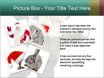 Funny grey rabbit PowerPoint Template - Slide 23