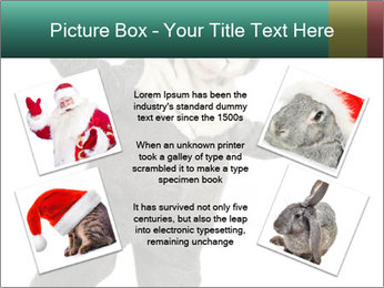 Funny grey rabbit PowerPoint Template - Slide 24