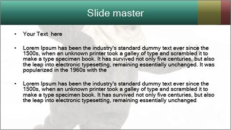Funny grey rabbit PowerPoint Template - Slide 2