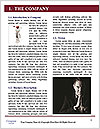 0000092049 Word Template - Page 3