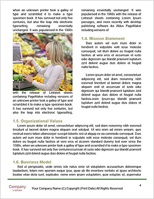 0000092052 Word Template - Page 4