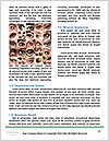 0000092056 Word Templates - Page 4