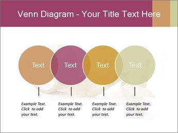 0000092063 PowerPoint Template - Slide 32