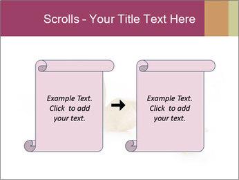 0000092063 PowerPoint Template - Slide 74