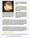 0000092065 Word Template - Page 4