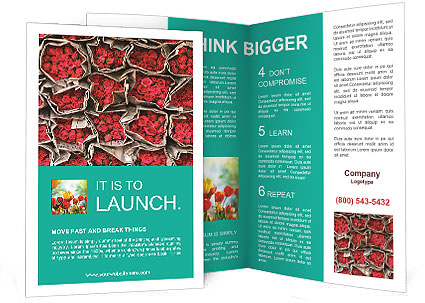 0000092067 Brochure Templates