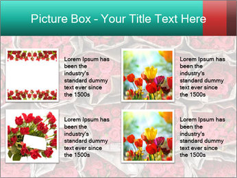 Red roses PowerPoint Template - Slide 14