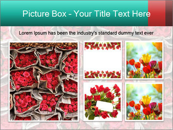 Red roses PowerPoint Template - Slide 19