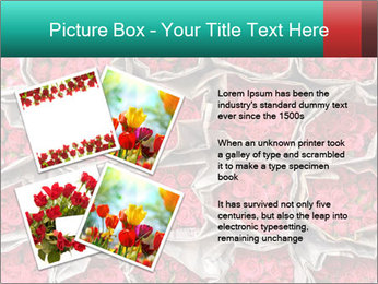 Red roses PowerPoint Template - Slide 23