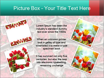 Red roses PowerPoint Template - Slide 24