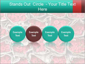 Red roses PowerPoint Template - Slide 76