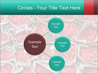 Red roses PowerPoint Template - Slide 79