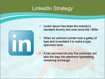 Green sea PowerPoint Templates - Slide 12