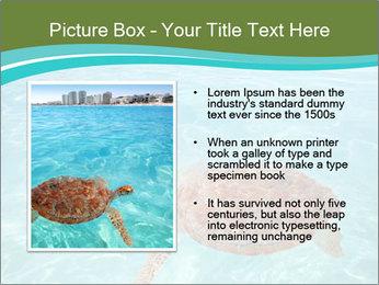 Green sea PowerPoint Templates - Slide 13