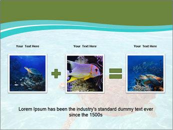 Green sea PowerPoint Templates - Slide 22