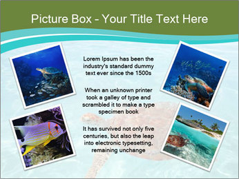 Green sea PowerPoint Templates - Slide 24