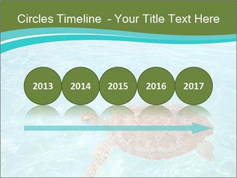 Green sea PowerPoint Templates - Slide 29