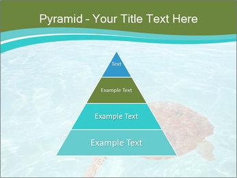 Green sea PowerPoint Templates - Slide 30