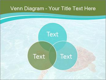 Green sea PowerPoint Templates - Slide 33