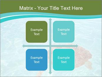 Green sea PowerPoint Templates - Slide 37
