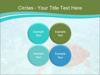 Green sea PowerPoint Templates - Slide 38