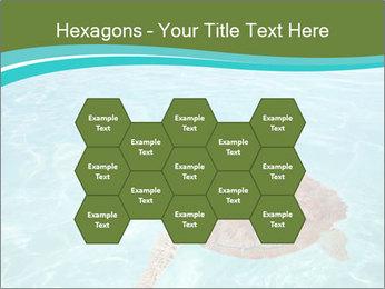 Green sea PowerPoint Templates - Slide 44