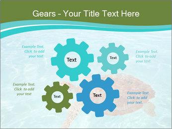 Green sea PowerPoint Templates - Slide 47