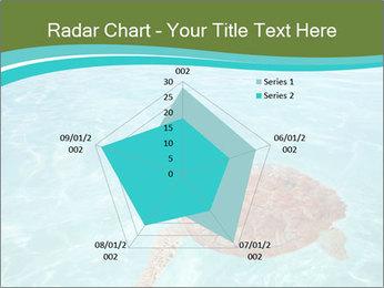 Green sea PowerPoint Templates - Slide 51