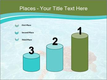 Green sea PowerPoint Templates - Slide 65
