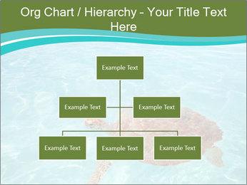 Green sea PowerPoint Templates - Slide 66