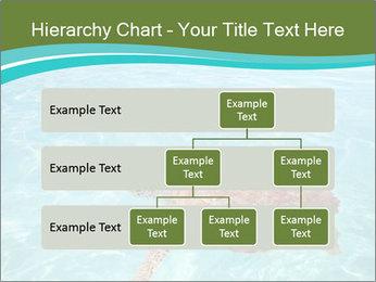 Green sea PowerPoint Templates - Slide 67
