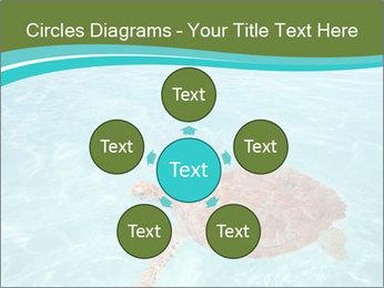 Green sea PowerPoint Templates - Slide 78