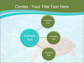 Green sea PowerPoint Templates - Slide 79