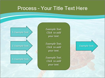 Green sea PowerPoint Templates - Slide 85