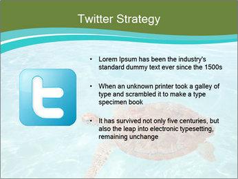 Green sea PowerPoint Templates - Slide 9