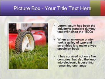 The Grass PowerPoint Template - Slide 13