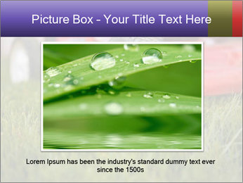 The Grass PowerPoint Template - Slide 16