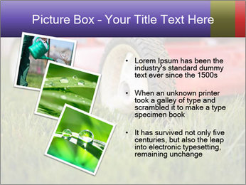The Grass PowerPoint Template - Slide 17