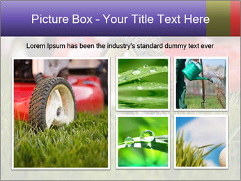 The Grass PowerPoint Template - Slide 19