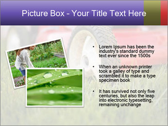 The Grass PowerPoint Template - Slide 20