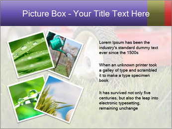 The Grass PowerPoint Template - Slide 23