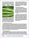 0000092075 Word Templates - Page 4