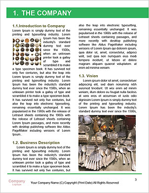 0000092087 Word Template - Page 3