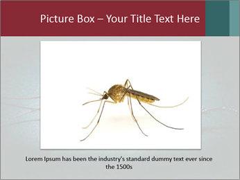 Cockroach extermination PowerPoint Templates - Slide 15